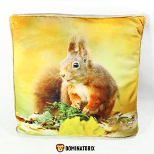 Dekoračný vankúš Veverička obojstranný(jedná strana veverička, druhá strana károvaný vzor). Je príjemný na dotyk. Materiál: 100% polyester. Rozmery: 46x46cm. Vhodné pre deti od 3 rokov.